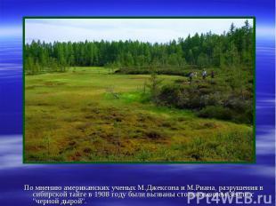 По мнению американских ученых М.Джексона и М.Риана, разрушения в сибирской тайге