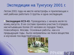 Летом 2001 года на месте катастрофы и прилегающих к ней районах работало 3 групп
