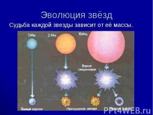 Судьба каждой звезды зависит от её массы. Судьба каждой звезды зависит от её мас