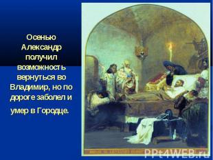 Осенью Александр получил возможность вернуться во Владимир, но по дороге заболел
