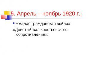 5. Апрель – ноябрь 1920 г.; «малая гражданская война»: «Девятый вал крестьянског