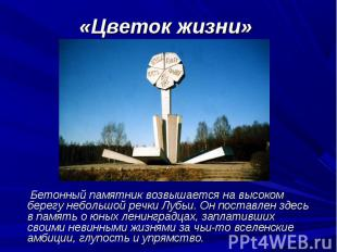 Бетонный памятник возвышается на высоком берегу небольшой речки Лубьи. Он постав