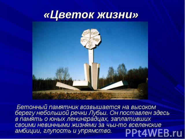 Бетонный памятник возвышается на высоком берегу небольшой речки Лубьи. Он поставлен здесь в память о юных ленинградцах, заплативших своими невинными жизнями за чьи-то вселенские амбиции, глупость и упрямство. Бетонный памятник возвышается на высоком…