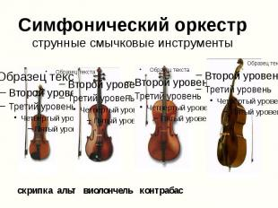 Симфонический оркестр струнные смычковые инструменты