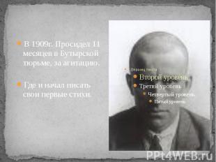 В 1909г. Просидел 11 месяцев в Бутырской тюрьме, за агитацию. Где и начал писать