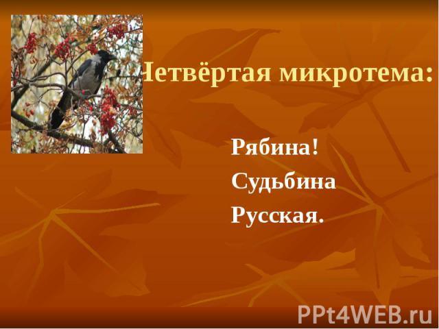 Четвёртая микротема: Рябина! Судьбина Русская.
