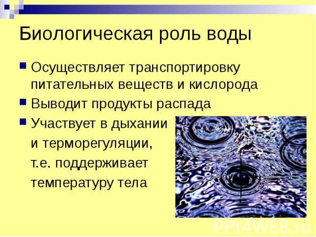 Биологическая роль воды Осуществляет транспортировку питательных веществ и кислорода Выводит продукты распада Участвует в дыхании и терморегуляции, т.е. поддерживает температуру тела