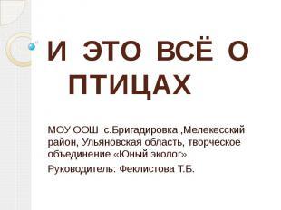 И ЭТО ВСЁ О ПТИЦАХ МОУ ООШ с.Бригадировка ,Мелекесский район, Ульяновская област