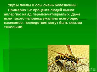 Укусы пчелы и осы очень болезненны. Укусы пчелы и осы очень болезненны. Примерно