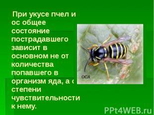 При укусе пчел и ос общее состояние пострадавшего зависит в основном не от колич