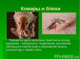 Комары и блохи Реакция на укусы насекомых практически всегда одинакова – припухл