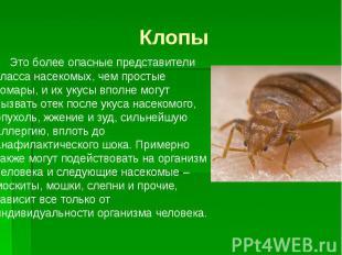 Клопы Это более опасные представители класса насекомых, чем простые комары, и их