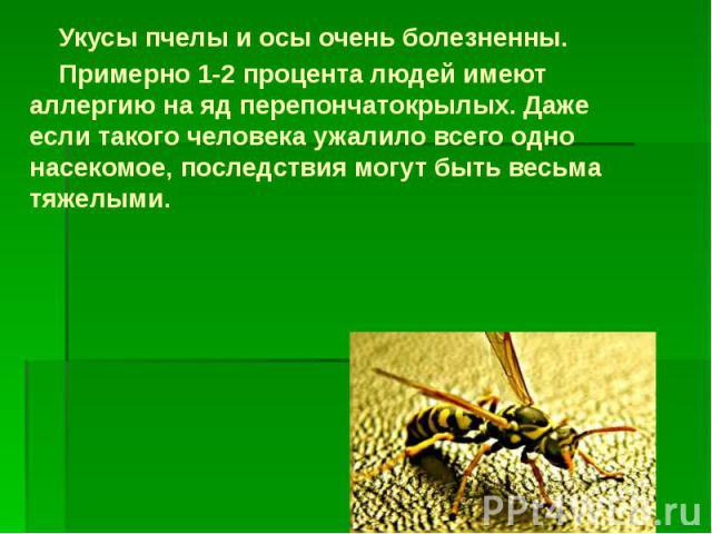 Укусы пчелы и осы очень болезненны. Укусы пчелы и осы очень болезненны. Примерно 1-2 процента людей имеют аллергию на яд перепончатокрылых. Даже если такого человека ужалило всего одно насекомое, последствия могут быть весьма тяжелыми.
