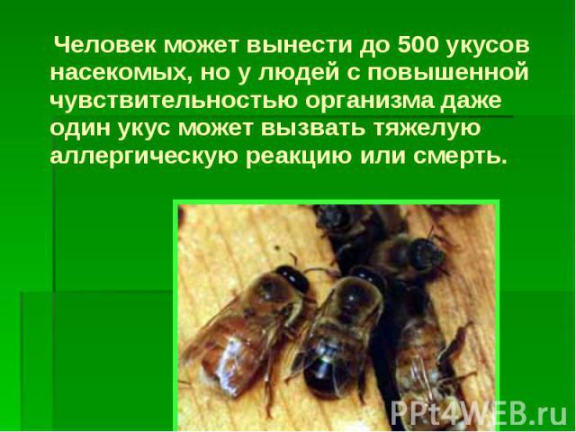 Человек может вынести до 500 укусов насекомых, но у людей с повышенной чувствительностью организма даже один укус может вызвать тяжелую аллергическую реакцию или смерть. Человек может вынести до 500 укусов насекомых, но у людей с повышенной чувствит…