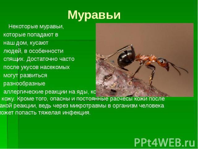 Муравьи Некоторые муравьи, которые попадают в наш дом, кусают людей, в особенности спящих. Достаточно часто после укусов насекомых могут развиться разнообразные аллергические реакции на яды, которые муравьи выделяют в кожу. Кроме того, опасны и пост…