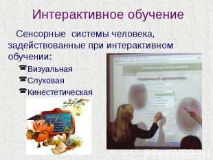 Интерактивное обучение Сенсорные системы человека, задействованные при интеракти
