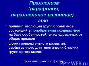 Праллелизм (парафилия, параллельное развитие) - это принцип эволюции групп орган