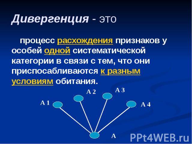 Дивергенция - это процесс расхождения признаков у особей одной систематической категории в связи с тем, что они приспосабливаются к разным условиям обитания.