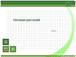 Питание растений 6 класс