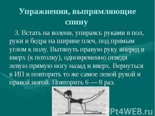 Упражнения, выпрямляющие спину 3. Встать на колени, упираясь руками в пол, руки