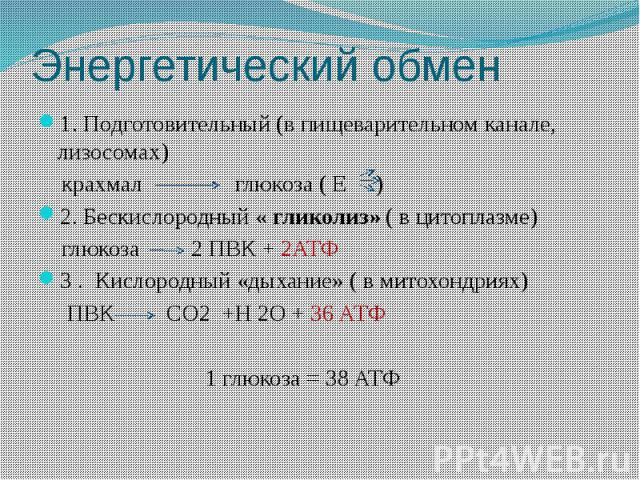 Энергетический обмен 1. Подготовительный (в пищеварительном канале, лизосомах) крахмал глюкоза ( Е ) 2. Бескислородный « гликолиз» ( в цитоплазме) глюкоза 2 ПВК + 2АТФ 3 . Кислородный «дыхание» ( в митохондриях) ПВК СО2 +Н 2О + 36 АТФ 1 глюкоза = 38 АТФ