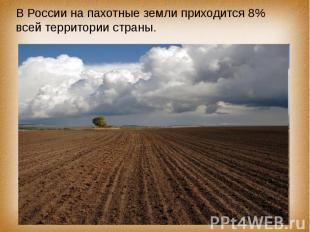 В России на пахотные земли приходится 8% всей территории страны.