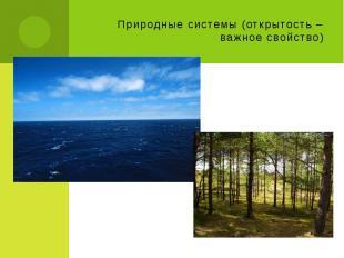 Природные системы (открытость – важное свойство)