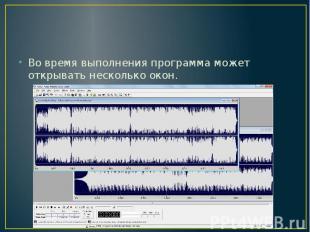 Во время выполнения программа может открывать несколько окон.