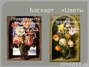 Босхарт «Цветы