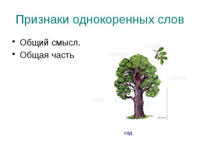 Признаки однокоренных слов Общий смысл. Общая часть