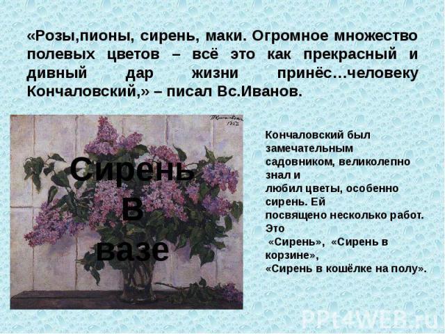 «Розы,пионы, сирень, маки. Огромное множество полевых цветов – всё это как прекрасный и дивный дар жизни принёс…человеку Кончаловский,» – писал Вс.Иванов.