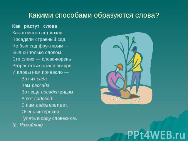 Какими способами образуются слова? Как растут слова Как-то много лет назад Посадили странный сад. Не был сад фруктовым — Был он только словом. Это слово — слово-корень, Разрастаться стало вскоре И плоды нам принесло — Вот из сада Вам рассада. Вот ещ…