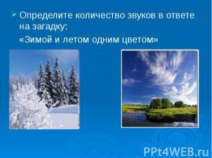 Определите количество звуков в ответе на загадку: «Зимой и летом одним цветом»