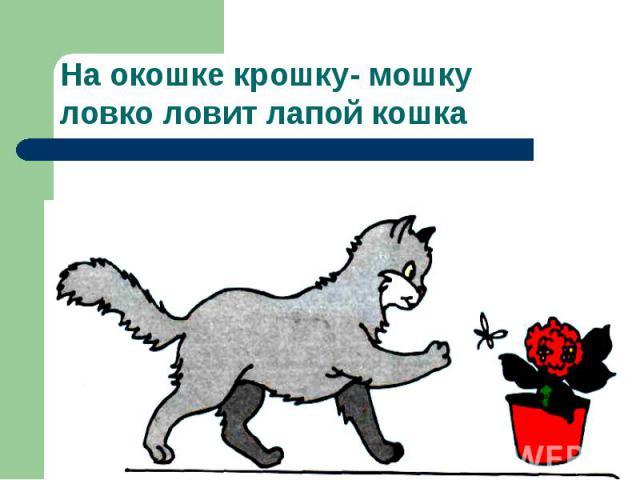 На окошке крошку- мошку ловко ловит лапой кошка