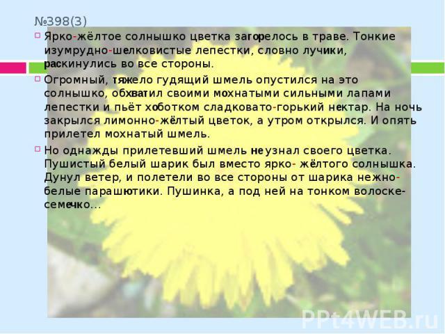 №398(3) Ярко-жёлтое солнышко цветка загорелось в траве. Тонкие изумрудно-шелковистые лепестки, словно лучики, раскинулись во все стороны. Огромный, тяжело гудящий шмель опустился на это солнышко, обхватил своими мохнатыми сильными лапами лепестки и …