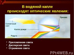 В водяной капле происходят оптические явления: