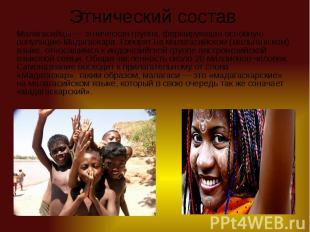 Этнический состав Малагасийцы— этническая группа, формирующая основную поп