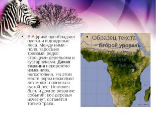 В Африке преобладают пустыни и дождевые леса. Между ними – поля, заросшие травам