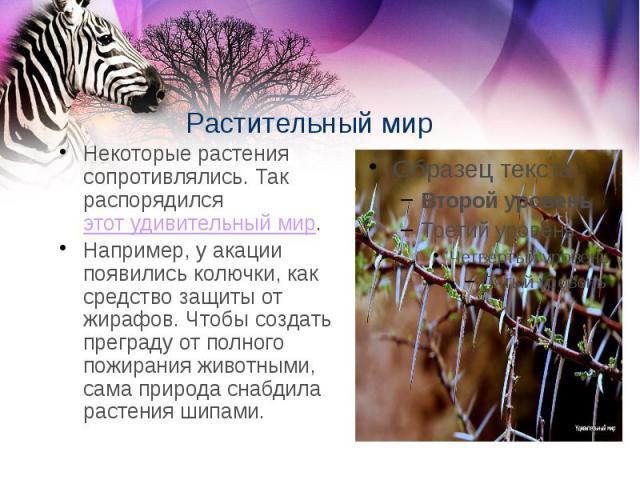 Растительный мир Некоторые растения сопротивлялись. Так распорядилсяэтот удивительный мир. Например, у акации появились колючки, как средство защиты от жирафов. Чтобы создать преграду от полного пожирания животными, сама природа снабдила расте…