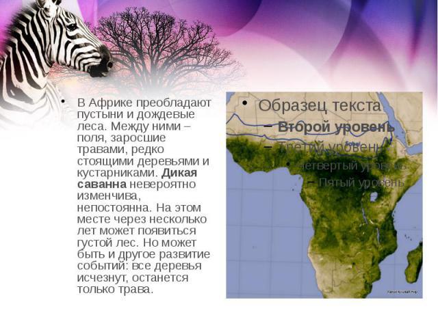 В Африке преобладают пустыни и дождевые леса. Между ними – поля, заросшие травами, редко стоящими деревьями и кустарниками.Дикая саваннаневероятно изменчива, непостоянна. На этом месте через несколько лет может появиться густой лес. Но м…
