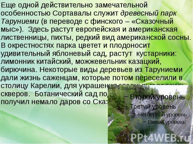 Еще одной действительно замечательной особенностью Сортавалы служит древесный парк Таруниеми (в переводе с финского – «Сказочный мыс»). Здесь растут европейская и американская лиственницы, пихты, редкий вид американской сосны. В окрестностях парка ц…
