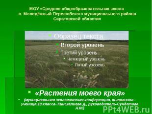 МОУ «Средняя общеобразовательная школа п. Молодёжный Перелюбского муниципального