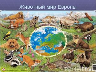 Животный мир Европы