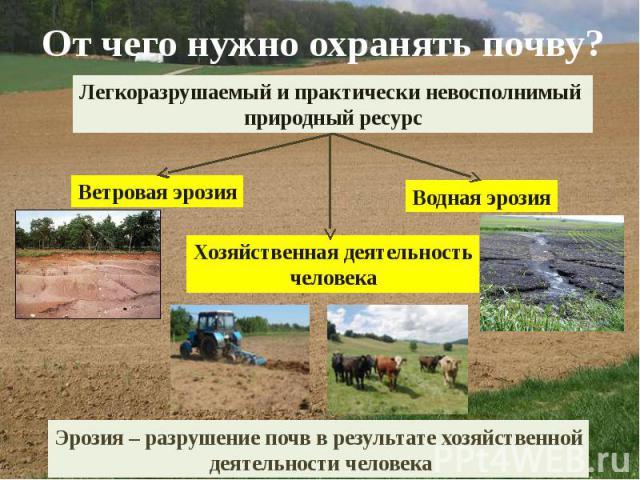 От чего нужно охранять почву?