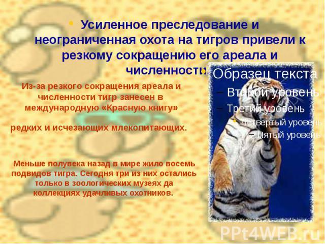 Из-за резкого сокращения ареала и численности тигр занесен в международную «Красную книгу» редких и исчезающих млекопитающих. Усиленное преследование и неограниченная охота на тигров привели к резкому сокращению его ареала и численности.