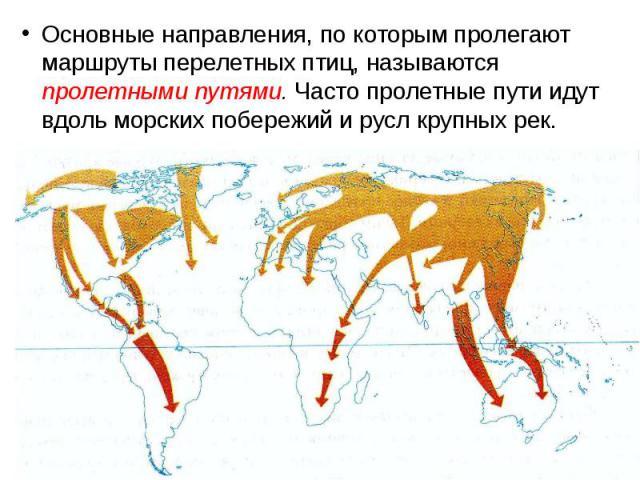 Основные направления, по которым пролегают маршруты перелетных птиц, называются пролетными путями. Часто пролетные пути идут вдоль морских побережий и русл крупных рек. Основные направления, по которым пролегают маршруты перелетных птиц, называются …
