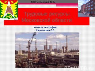 Трудовые ресурсы Московской области