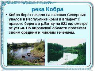 река Кобра Кобра берёт начало на склонах Северных увалов в Республике Коми и впа