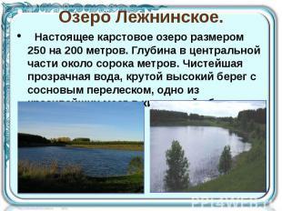 Озеро Лежнинское. Настоящее карстовое озеро размером 250 на 200 метр