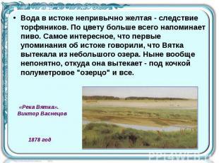 Вода в истоке непривычно желтая - следствие торфяников. По цвету больше всего на